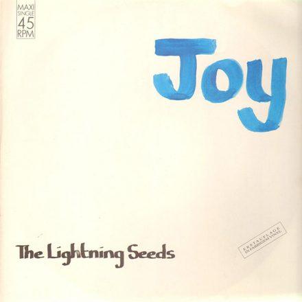 Joy (1989)