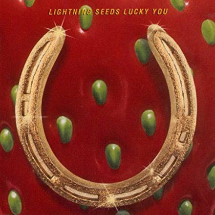 Lucky You (1995)