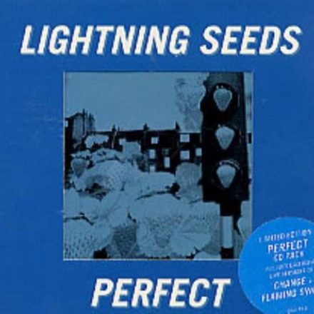 Perfect (1995)